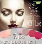 New Collection Special Price
